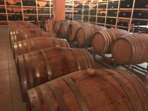 Wijnvaten Lyrarakis - Vinolove